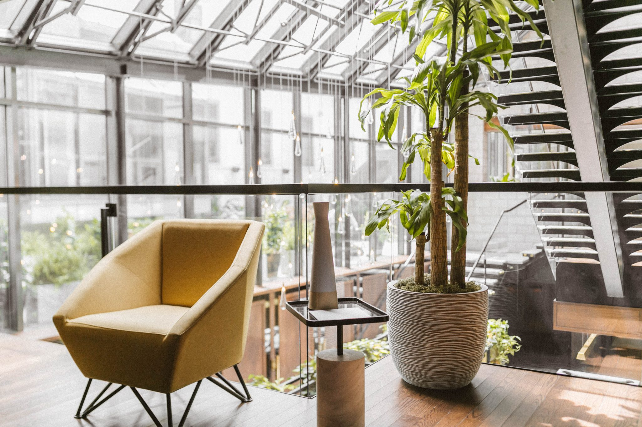 Une photo du lobby de l'Hôtel William Gray avec une chaise, des plantes et des escaliers en arrière-plan.